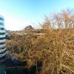 Grafton Bridge view